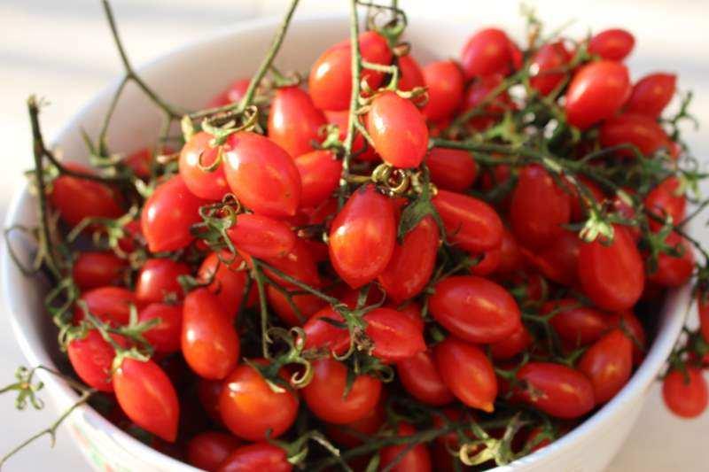 Sardische Tomaten